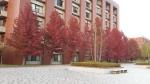 Kanazawa University