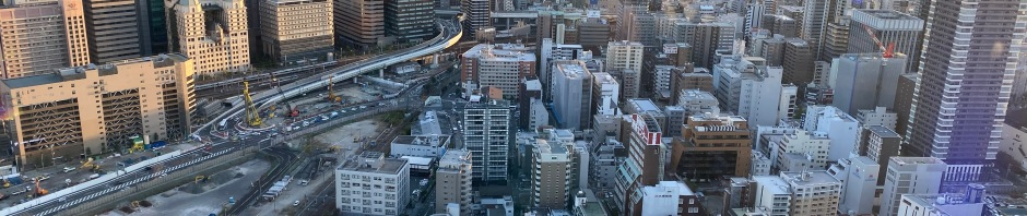 Can you spot the road that goes through a building in Osaka? Click to view large image.